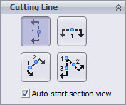 Auto-start section view